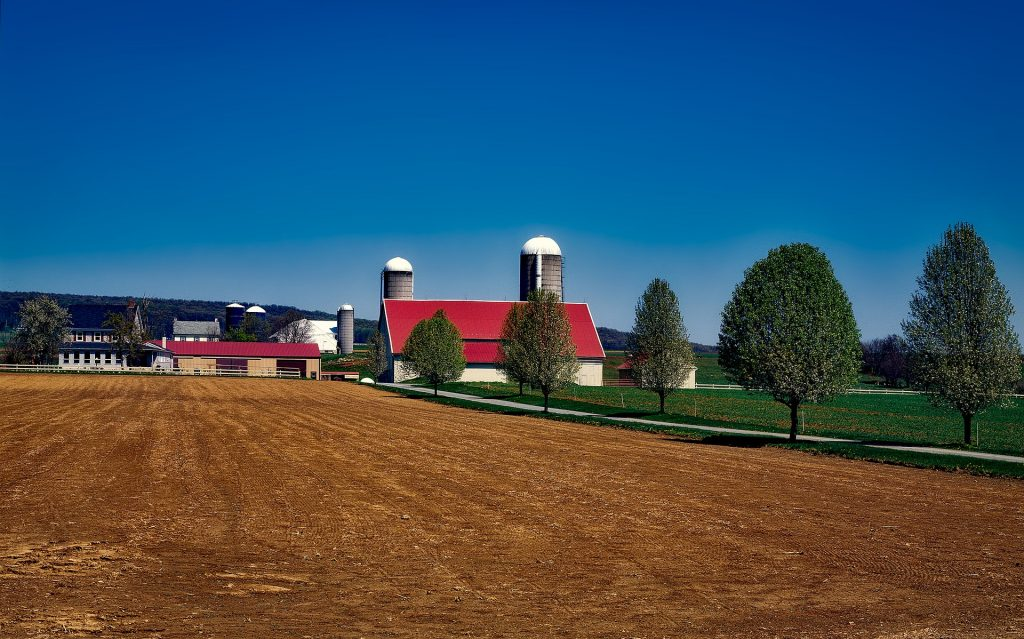 Amish Farm in Pennsylvania
